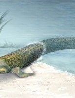 Kako su izgledale prve kopnene životinje?