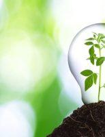 Kako biti ekološki osviješten ?