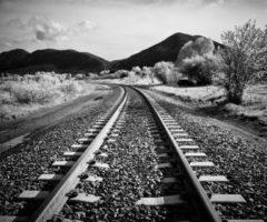 Kako fotografirati crno – bijele fotografije ?