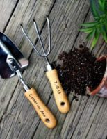 Kako odabrati alat za vrtlarenje?