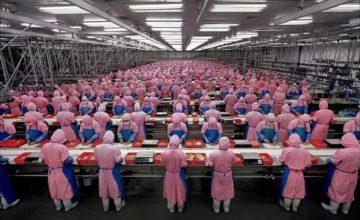 Foxconn najavljuje potpunu automatizaciju svojih tvornica