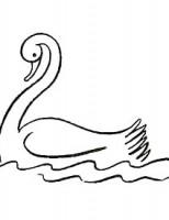 Kako nacrtati labuda?