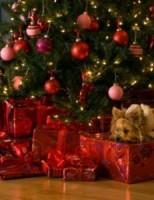Kako krščani slave Božić?