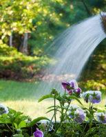 Kako uštedjeti vodu kod zalijevanja vrta ?