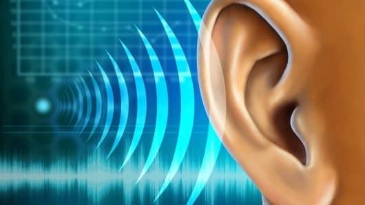 Rezultat iskanja slik za sluh
