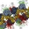 umjetni_proteini