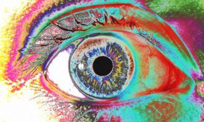 B0005629 Human eye