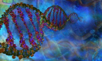 DNK bi mogao biti baza za molekularne elektronske sklopove nano- veličina (Credit: Thinkstock)