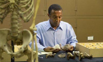 Otkriveni pračovjek je živio prije 2,9 do 3,8 miliona godina [Reuters]