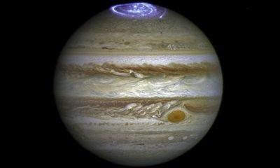 Auroras on Jupiter