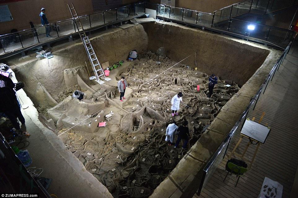 u kini pronadeni ostaci pogrebne povorke stari 2400 godina