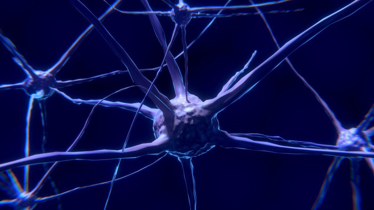ljudsko pamcenje se moze poboljsati uz mozdani implantat
