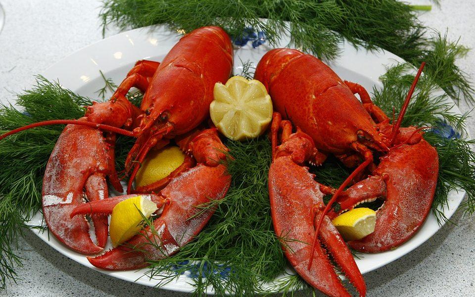 svicarska zabranila kuhanje zivih jastoga